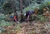 _DSC5364 (pabloviota) Tags: trail samano