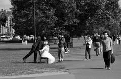 Cracovia (igorigor88) Tags: travel trees wedding people bw white holiday black alberi bride nikon kiss photographer poland polska krakow bn persone bianco nero viaggio matrimonio polonia vacanza bacio sposa sposi passanti d3300