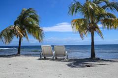 Seaside (Kelsie DiPerna) Tags: ocean travel beach canon palms relax island islands bay sand chairs honduras wanderlust palmtrees shore caribbean relaxation centralamerica neptunes caribbeansea utila centroamerica islasdelabahia