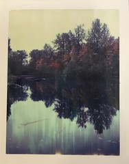 (~KIM~) Tags: autumn reflection fall polaroid expired iduv natureycrap