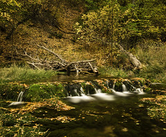 Fall on Hobble Creek (JMGiolas) Tags: autumn fall wasatch pentax ricoh hobble canyoncreeks