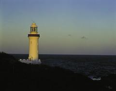 norah head lighthouse (annetteflottwell) Tags: lighthouse field australia nsw toyo norahhead