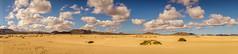 Fuerteventura dunes de Coralejo (Aurlie C.29) Tags: fuerteventura coralejo