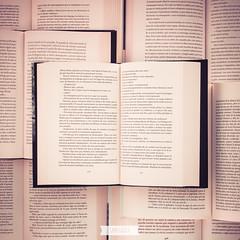 LETRAS (Sami Garra) Tags: book letters libro libros letras proyectoenredado