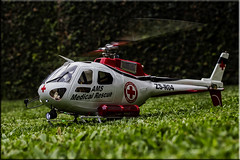 AS 350 Equreuil RC 450 Size (Nstor Pugliese) Tags: radio control helicopter helicpteros aeromodelismo aeromodeling