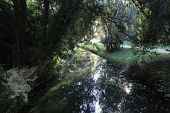 Reggia Parco_75