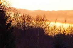 Forbach en Décembre 2015 - 81 (paspog) Tags: sunset france coucherdesoleil moselle forbach