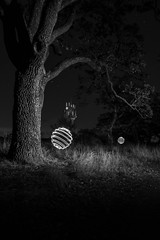 Orbs in BW (~138~) Tags: 138shadowpeople lpwailliance victoria abstract art ball bc canada colour colours light lightart lightpaint lightpainting lightsculpture lights longexposure night nightlights nightphotography nightscape orb paintingwithlight shadowpeople sphere summitpark trippy
