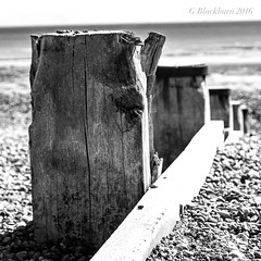 Groynes (Garry Blackburn) Tags: blackandwhite monochrome seascape mono groins sonya77ii dof