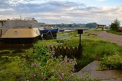 Low Tide, at the Quay. River Deben, Woodbridge. 23 06 2016. Zoom in for details (pnb511) Tags: suffolk rurallandscape riverside tidal boats quay eastanglia riverdeben masts reflections sunshine mud dock