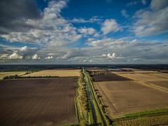 Devil's Dyke Walk-25 (adambowie) Tags: lode england unitedkingdom gb devilsdyke cambridgeshire newmarket