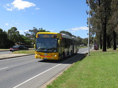 Scania K320UA on Golden Grove Rd (RS 1990) Tags: goldengroverd wynnvale redwoodpark teatreegully adelaide southaustralia thursday 27th october 2016 scania k320ua bus