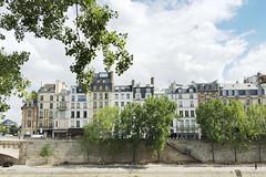 All lined up (Paris du Jour Atelier) Tags: paris france architecture building apartments seine daylight trees   parisian frana bluesky   6me 6arrondissement ledefrance ledelacit laseine pars