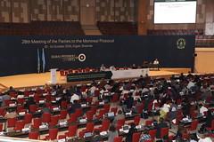 Resumed discussions of OEWG38 | Kigali, Rwanda| October 8, 2016 (RWANDA ENVIRONMENT MANAGEMENT AUTHORITY (REMA)) Tags: rwanda montreal protocol greenrwanda mop28 oewg28