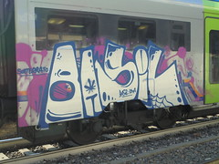 sotterrato/ dad (en-ri) Tags: basil dna bianco blu rosa train torino graffiti writing ragnatela