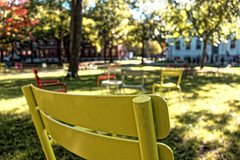 (LhMercier) Tags: boston usa massachusets sony rx100 harvard harvardsquare chair college lawn garden sunnyafternoon