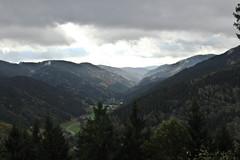 IMG_7217 (hudsonleipzig80) Tags: schwarzwald blackforest natur nature outdoor badenwrtemberg autumn herbst fall tree baum bume prechtal oberprechtal trekking wandern mountains mountain canon canoneos1200d eos1200d eos 1200d