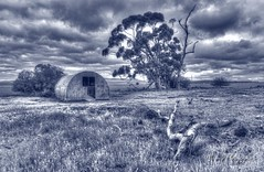 DSC_3269_Sandstone Ruin B&W (Manni750) Tags: sandstone ruin black white sky clouds tree trees history heritage south australia