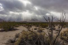 Sunbeams. Raining in Anza-Borrego Desert State Park