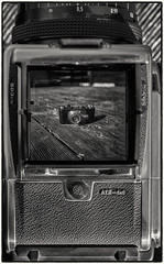 Hasselblad 503CW meets Leica I (Photographische Einblicke) Tags: nikondf hasselblad503cw leicai schwarzweis blackwhite