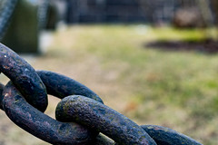 Links (Jori Samonen) Tags: chain link grass etutl helsinki finland nikon d3200 180550 mm f3556