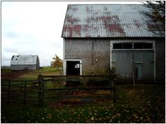 Open Sky Farms (coldwar_bonnet) Tags: lomofake fakelomo lgg5