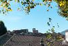 Tetti di Lucca (andrea.prave) Tags: lucca toscana tuscany italia italy イタリア איטליה 意大利 италия إيطاليا italie italien toscane toskana тоскана 托斯卡纳 トスカーナ州 توسكانا tetti cintamuraria