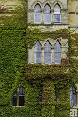 Oxford (Julien Ruff Photos) Tags: university oxford uk england angleterre nikon d7100 julienruffphotos