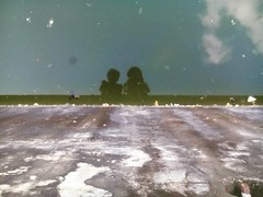 #shadow  #water #sky #cloud #frog #JU #gholagraphy  #mobilephotography