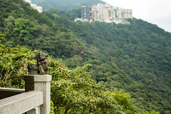 IMG_4515 (kattwyllie) Tags: hongkong waterfront beach landscape victoriapeak peaktram canonphotography travel travelling travelphotography asia hongkongcity hongkongphotography water floral macro ocean mermaid symphonyoflights lightshow yungshuewan island lammaisland sokkwuwan