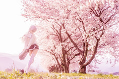 unforgettable season (AZURE_TB) Tags: spring sakura cherryblossom dollfiedream dd sony ilce7 sel55f18z