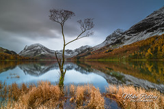 The Buttermere lone tree .. (Mike Ridley.) Tags: lonetree nature leefilters landscape sonya7r2 sony mikeridley