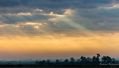 Le ciel rayonn par le soleil. (Bouhsina Photography) Tags: rayon soleil panorama landscape paysage ttouan maroc morocco matin clouds sky outside sunrays sun rays bouhsina bouhsinaphotogrphy canon 5diii ef100400 arbres souani