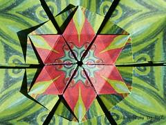 Shieled Star (2) by Jorge Jaramillo (esli24) Tags: stars origami sterne paperstars papierfalten carmensprung papiersterne jorgejaramillo origamistern juliaschönhuber esli24 ilsez kaleidoscopepaper kaleidoskoppapier shieldedstar