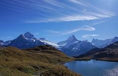 Faszination Bergwelt 7  -  (Explored) (Ronile35) Tags: schweiz first berneroberland bachalpsee