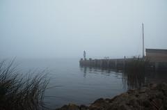 morning meditation in the fog (flegontovna) Tags: morning nature landscape person peaceful meditating meditation specland