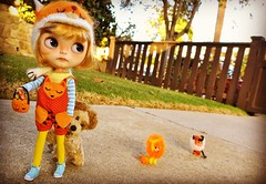 Animiddle's are cute, but very slow 🎃🎃🎃🎃 #blythe
