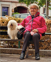 man and his dog (marneejill) Tags: pink friends dog white man france smiling bench de happy furry sitting tie best colmar coton jacket bow colourful bolognese companionship tulear