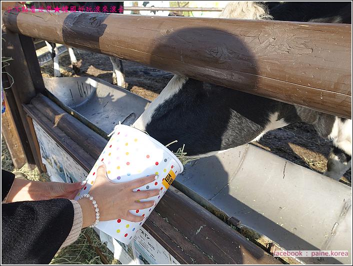 函館牛乳Ice118 (9).JPG