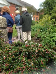 Lewes Walk 2015 3