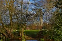1353-17L (Lozarithm) Tags: salisbury wilts landscape cathedrals pentax zoom k50 1855 smcpda1855mmf3556alii