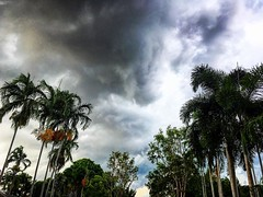 Tropical storm coming in. #Darwin #Australia