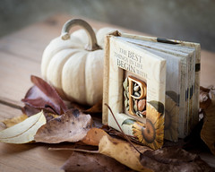 The Best Things.... (lclower19) Tags: book letter odt atsh p pumpkin typography autumn promptaddicts stilllife