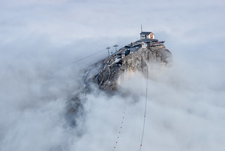 An Apparition in the Fog