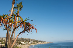 Laguna Beach (m01229) Tags: california us unitedstates lakeforest d7200 may2015