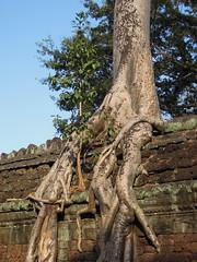 DSCN2314 (albyantoniazzi) Tags: voyage travel architecture cambodia angkorwat temples siemreap archeology kampuchea cambogia