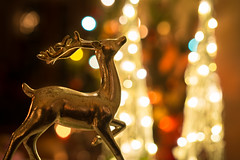 Happy, happy Christmas, that can win us back to the delusions of our childish days; that can recall to the old man the pleasures of his youth; ... (Ranveig Marie Photography) Tags: christmas bokeh jul xmas noel deer ornament nostalgia silver lights julepynt season kersfees christusfees jol рождествохристово bożenarodzenie vánoce navidad høytid holidays weihnachten jól jõulud kerstmis natal crăciun vianoce 圣诞 圣诞节 聖誕節 ziemassvētki christmastree colors colours decoration images pictures photos ranveigmarienesse ranveignesse pics photographs colorful colourful bokehballs sirkulærbokeh mæland bømlo sunnhordland hordaland julafta julaften christmaseve bilder bremnes visitsunnhordland photography