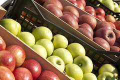 _MG_8160-1 (palli.davide) Tags: cibo frutta mele mela cassa cassetta rosse verdi apple apples box red green natura nature natural