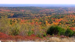 Blue Job Mtn. NH (TimmyDennis) Tags: fall autmn new hampshire mountain mountains outdoors outdoor woods forest weather nature view vista