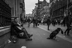 One Man And His Dog (Leanne Boulton) Tags: monochrome urban street candid portrait portraiture streetphotography candidstreetphotography streetlife sociallandscape environmentalportrait man male face facial expression look emotion feeling pet dog canine pooch begging hat busker performer musician guitar guitarist cute adorable tone texture detail depth natural outdoor light shade shadow city scene human life living humanity society culture canon 7d 21mm wideangle black white blackwhite bw mono blackandwhite glasgow scotland uk